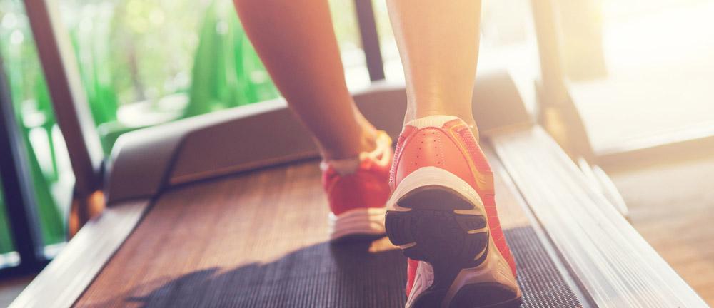 fitness-konzept sportslounge